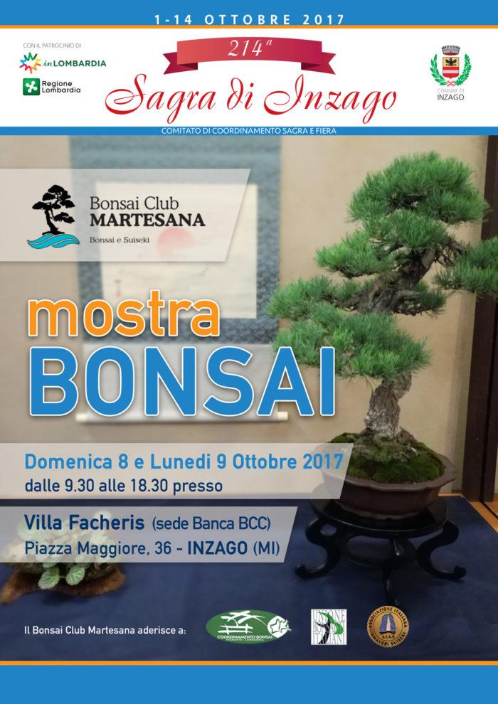 Il Bonsai Club Martesana In Mostra A Inzago Bonsai Club Martesana